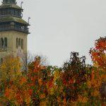 *autunno